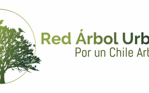 red-arbol-urbano